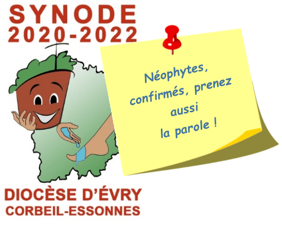 Néophytes et synode